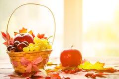 与篮子的秋天背景与黄色槭树离开,葡萄,红色苹果 秋天收获框架在年迈的木头的与拷贝空间 免版税图库摄影