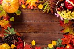 与篮子的秋天背景,黄色槭树离开,葡萄,红色苹果 秋天收获框架在年迈的木头的与拷贝空间 免版税库存照片