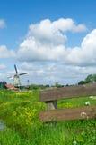 与篱芭和风车的典型的荷兰风景 免版税图库摄影