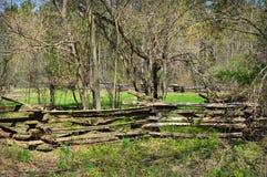 与篱芭的树木繁茂的物产 免版税库存图片