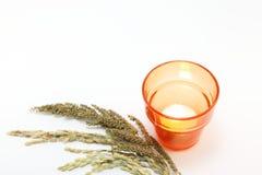 与米和杂草的耳朵的蜡烛 图库摄影