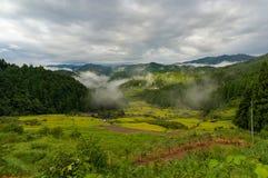与米大阳台的日本农村风景在山森林里 免版税图库摄影
