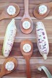 与米木杓子的白色和紫色玉米在木backgroun 免版税库存图片