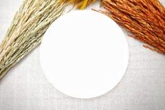 与米的耳朵的白色盘在棕色皮革背景的 免版税库存图片
