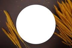 与米的耳朵的白色盘在棕色皮革背景的 库存照片