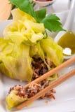 与米袋子的圆白菜 库存照片