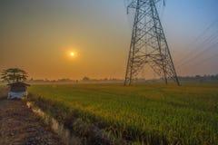 与米领域和高压塔的早晨好日出 免版税库存图片