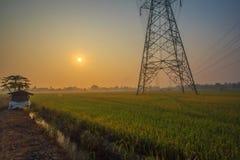 与米领域和高压塔的早晨好日出 免版税库存照片