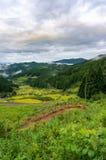 与米领域大阳台的日本农村风景 库存图片