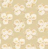 与米黄花卉主题的无缝的模式 免版税库存图片