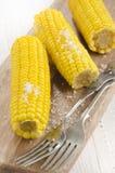 与粗盐的煮沸的玉米棒子 免版税图库摄影