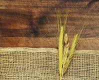 与粗砺的织品粗麻布和麦子耳朵的木背景 免版税图库摄影