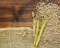 与粗砺的织品粗麻布和麦子耳朵的木背景 库存照片