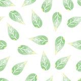 与精美的无缝的样式,绿色叶子 库存例证