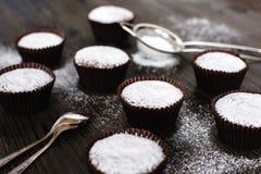 与糖粉末的巧克力杯形蛋糕 图库摄影