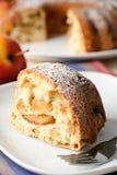 与糖粉末的苹果饼 免版税图库摄影