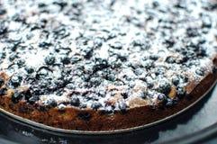 与糖粉末的黑醋栗馅饼在一个圆的烘烤盘子 免版税库存照片