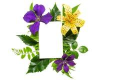 与紫罗兰色和黄色花、叶子和空白的白色贺卡的创造性的布局 免版税图库摄影