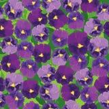 与紫罗兰色花的无缝的模式 库存图片