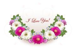 与紫色翠菊的绯红色桃红色和白色大丁草和招呼我爱你在白色背景 库存图片