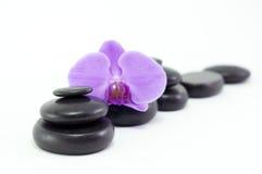 与紫色花的黑色按摩石头 免版税库存图片