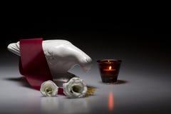 与繁文缛节和白玫瑰的瓷哀悼的鸠 免版税库存照片