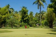 与红旗的微型高尔夫球领域在马尔代夫的热带手段 库存图片