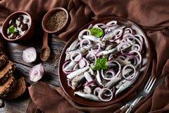 与红洋葱圆环的被盐溶的西鲱沙拉在一张老土气木桌上的一块陶器板材用在碗和黑麦的橄榄切了 免版税图库摄影