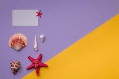 与红海星的礼品券在五颜六色 库存照片