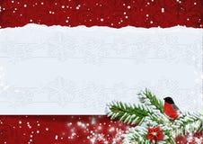 与红腹灰雀的圣诞节背景。复制可利用的空间。 免版税库存图片