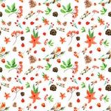 与红腹灰雀,红色花,花楸浆果,杉木锥体的冬天圣诞快乐无缝的背景 皇族释放例证