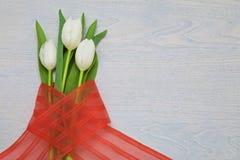 与红色丝带在木背景和空的空间的白色郁金香文本的 库存图片