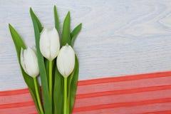 与红色丝带在木背景和空的空间的白色郁金香文本的 库存照片