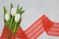 与红色丝带在木背景和空的空间的白色郁金香文本的 免版税库存图片