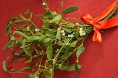 与红色丝带弓的槲寄生 免版税图库摄影