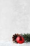 与红色中看不中用的物品的圣诞节在雪的背景和叶子 免版税库存图片