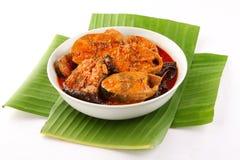 与红色冷颤和草本的南印地安鱼咖喱 库存图片