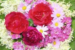 与红色和桃红色玫瑰,雏菊的五颜六色的花背景 免版税图库摄影
