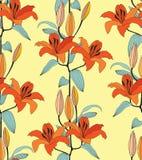 与红色和橙色花的无缝的纹理 库存照片