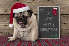 与红色圣诞老人帽子的逗人喜爱的脾气坏的哈巴狗小狗在与文本非常圣诞快乐的黑板标志旁边,坐木背景 图库摄影