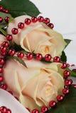 与红色小珠的两朵玫瑰在一块白色布料 免版税库存照片