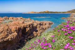 与红色岩石的海视图 免版税库存照片