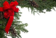与红色弓和活杉木大树枝的圣诞节边界 库存图片