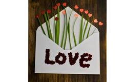 与红色心脏和草的信封 信包重点信函爱 日s华伦泰 2月14日 免版税库存照片