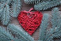 与红色心脏的杉树分支在灰色背景 免版税库存照片