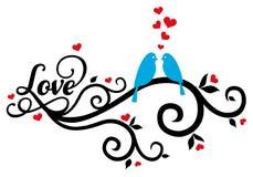 与红色心脏,传染媒介的爱鸟