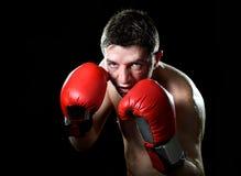 与红色战斗的手套的年轻恼怒的战斗机人拳击在拳击手姿态 库存照片