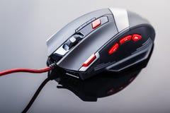 与红色按钮的赌博老鼠 免版税图库摄影