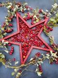 与红色星和莓果的无政府主义的Xmas卡片 免版税库存照片