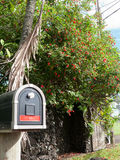 与红色条纹的邮箱和在后面的红色花 免版税库存照片